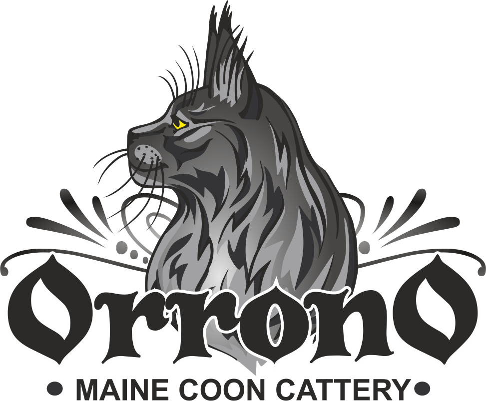 Orrono Maine Coons