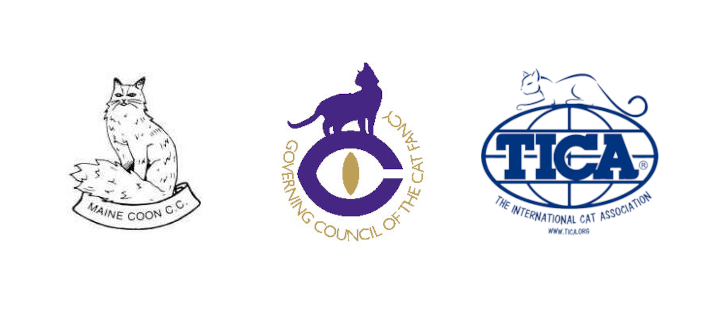Logos for the Maine Coon Cat Club, GCCF and TICA