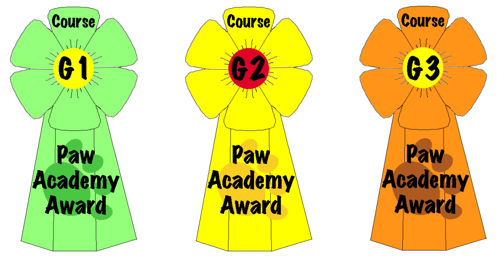 Three rosettes, one in green, one in yellow, one in orange. Awards for completing G1, G2 and G3 respectively